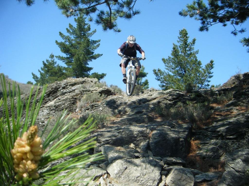 Mountain biker in Alexandra cross country riding