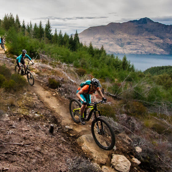 Epic Queenstown Bike trail beeched as