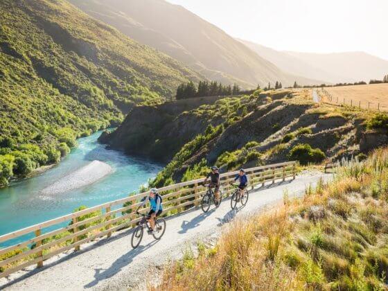 Biking the Gibbston Valley Wine Trail