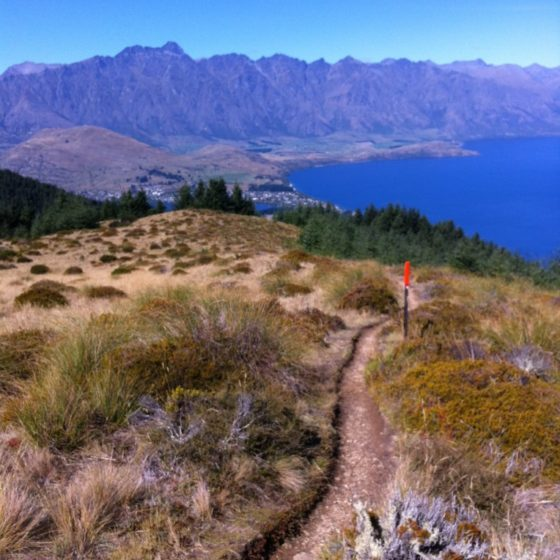 Fernhill Loop cross country track, Queenstown
