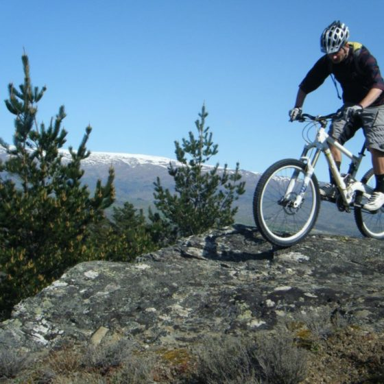 Mountain biking in Alexandra cross country trails