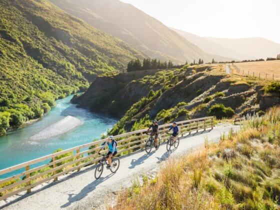 Biking the Gibbston Valley Wine Trail